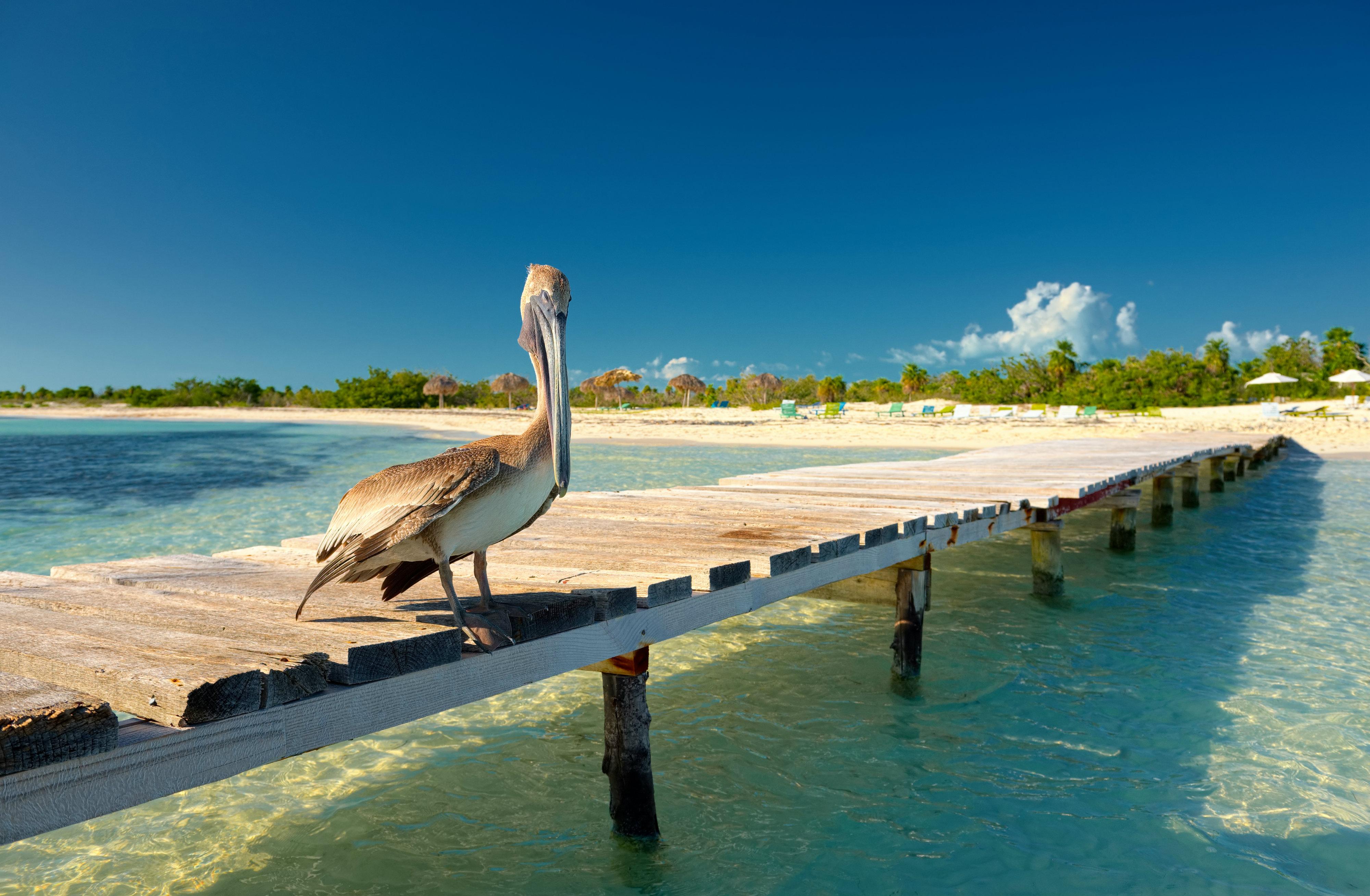 Ausgezeichnet Einrichtung Im Karibik Stil Fotos - Heimat Ideen ...