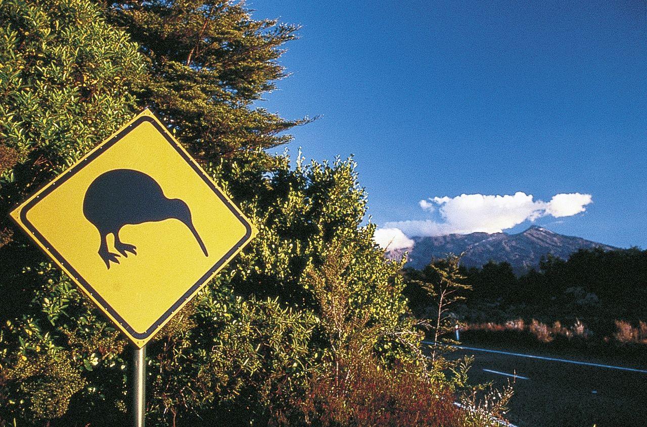 Strassenschild Kiwi