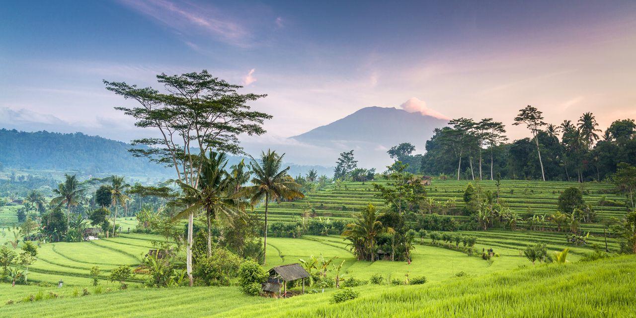 indonesien urlaub infos tipps angebote adac reisen. Black Bedroom Furniture Sets. Home Design Ideas