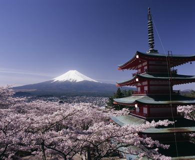 ADAC Mitgliederreise Faszinierendes Japan