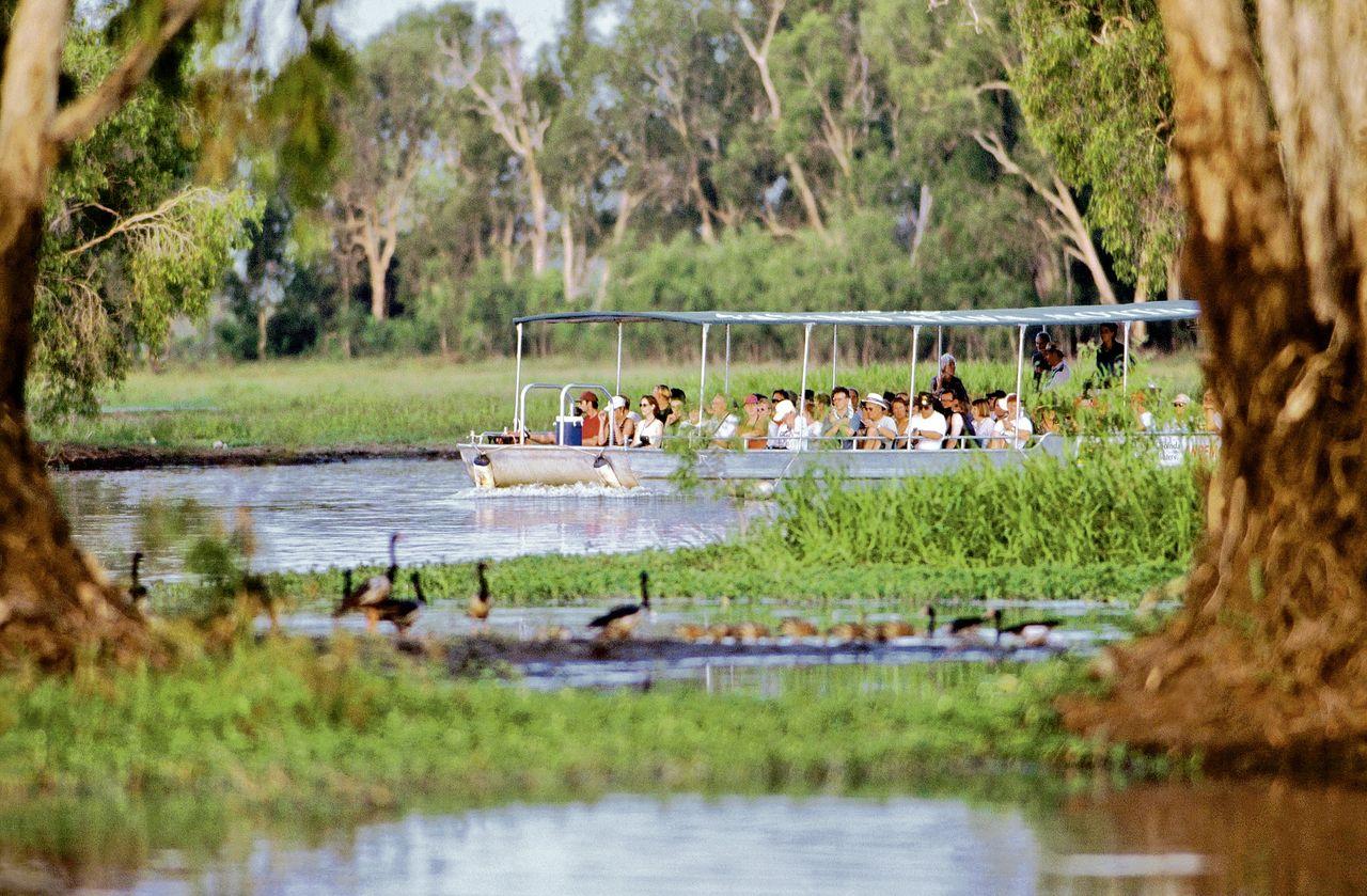 Fluss-Safari