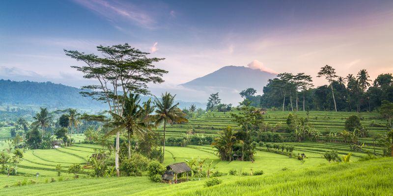 Ratgeber für Ihre Indonesien-Reise